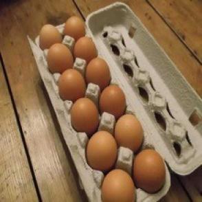 土鸡蛋盒包装内衬