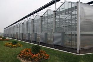 连栋温室  连栋形式  空间亮点