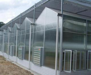 阳光板温室  美观大方  现代温室