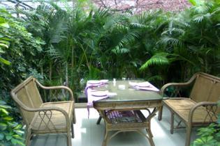 生态餐厅    阳光餐厅    天然餐厅
