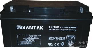 赛特蓄电池6-GFM24/12  12V24AH
