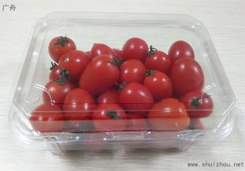 一次性食品包装盒,环保吸塑盒,食品吸塑包装盒,上海广舟包装制品有限公司