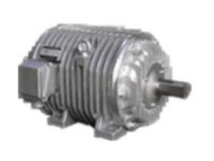 YGP辊道异步电动机