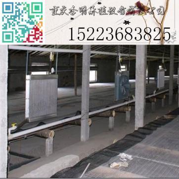水暖热风炉 养殖设备 养殖供暖设备 育雏水暖炉 养殖热风炉