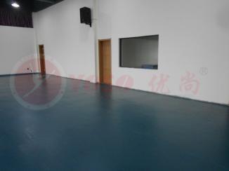 舞蹈排练厅地板,舞蹈排练室舞蹈地板,舞蹈教室舞蹈地胶