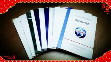 东莞可行性研究报告/东莞可行性报告公司