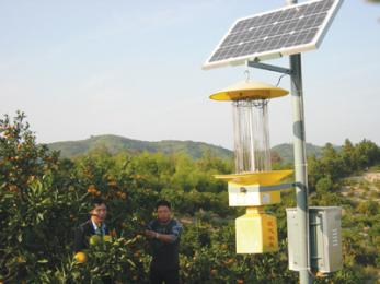 太阳能杀虫灯、立杆式太阳能杀虫灯价格图片 频振诱控技术