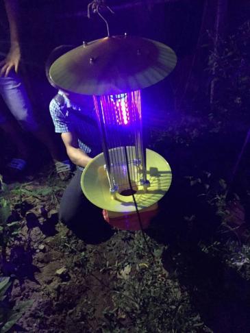 专业生产频振式杀虫灯太阳能杀虫灯