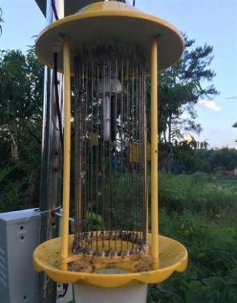 户外鱼塘用220V杀虫灯,养殖场用12V太阳能诱虫灭蚊灯价格