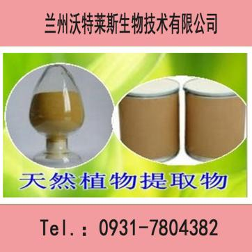 猴头菇粉  10:1  可定做厂家直销  大量供应 现货包邮 欢迎新老客户垂询!