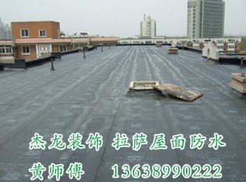拉萨屋面防水 拉萨屋顶防水 拉萨屋面防水维修公司