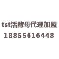 tst活酵母代理加盟官方中心