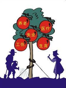 广州泽才长期报销生育保险 离职广州生育险代理 代缴个人生育险