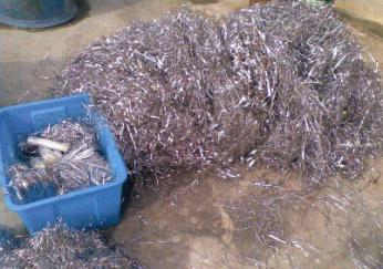 东莞锡块回收 东莞锡块回收