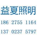 深圳市益夏照明科技有限公司