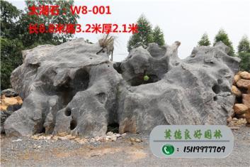 太湖石假山石、大型太湖石价格、公园太湖石造景