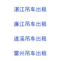 廉江市金记吊车租赁服务有限公司
