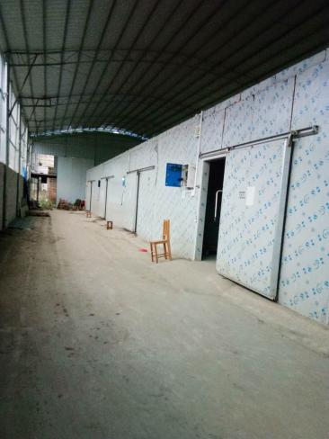 广西桂林冷库安装设计//广西桂林冷库安装价格联系电话