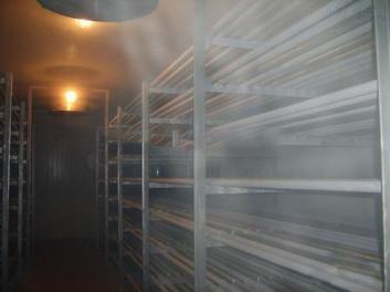安徽冷库设计过程中果蔬保鲜冷库设计要点