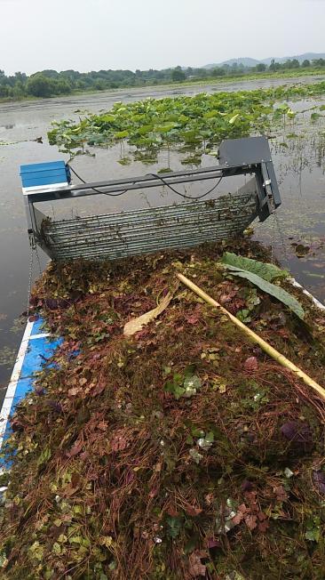 湖北池塘割草机