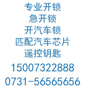 湘乡市110定点开锁单位安盾锁业