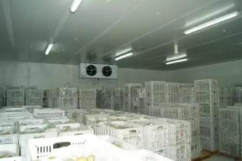 大连冷库安装能力与质量双优