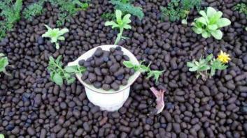 广州陶粒厂的陶粒相关知识