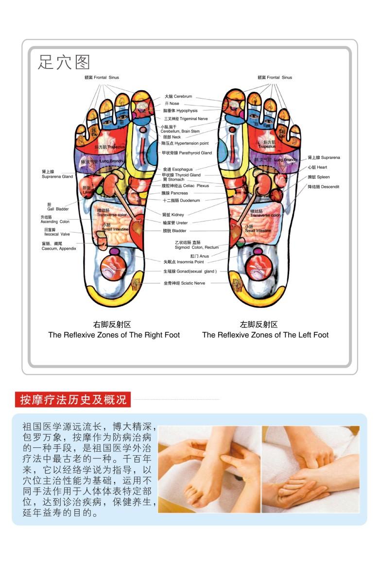 脚底按摩器(eh-007eh)      产品类别:按摩仪/按摩器      按摩部位