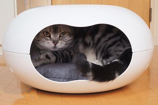 从外观上看,它呈鹅卵石形状,看起来很像一个甜甜圈,没错,就是甜甜圈